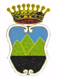 Lo Stemma - Coat  of Arms  Paduli